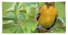 Bath Towel featuring the photograph Baltimore Oriole Closeup by Ricky L Jones
