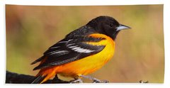 Baltimore Oriole IIi Bath Towel