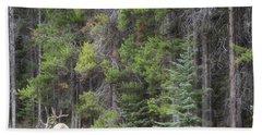 Banff Canada Elk Woodland Landscape Bath Towel by Andrea Hazel Ihlefeld