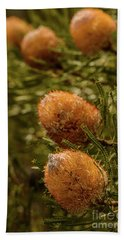 Hand Towel featuring the photograph Banksia by Werner Padarin