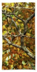 Bare Sumac Tree Hand Towel by Jimmy Ostgard