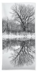 Hand Towel featuring the photograph Bare Trees by Darren White