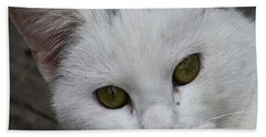 Barn Cat Hand Towel