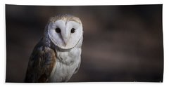 Hand Towel featuring the photograph Barn Owl by Andrea Silies