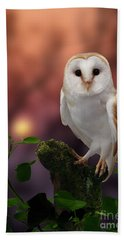 Barn Owl At Sunset Hand Towel
