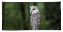 Bath Towel featuring the photograph Barn Owl In The Woods 2 by Andrea Silies