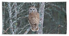 Barred Owl 1396 Hand Towel by Michael Peychich