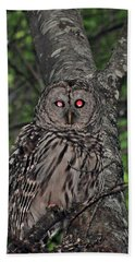 Hand Towel featuring the photograph Barred Owl 3 by Glenn Gordon