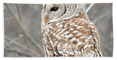 Barred Owl Close-up Bath Towel by Kathy M Krause