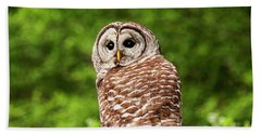 Bath Towel featuring the photograph Barred Owl Closeup by Peggy Collins