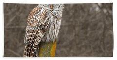 Barred Owl Bath Towel by Kathy M Krause