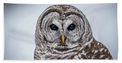 Bath Towel featuring the photograph Barred Owl by Paul Freidlund