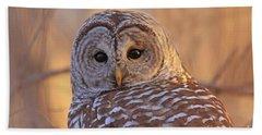 Barred Owl Portrait  Bath Towel