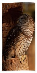 Bath Towel featuring the digital art Barred Owl Sleeping In A Tree by Chris Flees