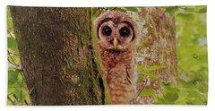 Barred Owlet Hand Towel