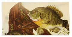 Basking Bluegills Hand Towel