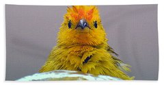 Hand Towel featuring the photograph Bath Time Finch by Lori Seaman
