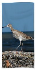 Beach Bird Hand Towel by Skip Willits