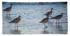 Beach Birds Bath Towel