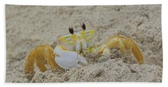 Beach Crab In Sand Hand Towel by Randy Steele