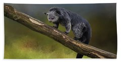 Bearcat Hand Towel