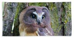 Beautiful Eyes Of A Saw-whet Owl Chick Bath Towel