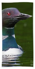 Beautiful Loon Close Up Bath Towel