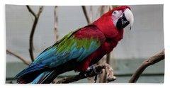 Beautiful Macaw Bath Towel