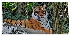 Beautiful Tiger Bath Towel