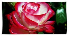 Hand Towel featuring the photograph Beauty Rose by Joseph Frank Baraba