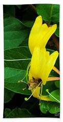 Bee Looking For Food  Hand Towel by Jasna Gopic