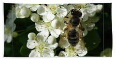 Bee On White Flowers 2 Bath Towel