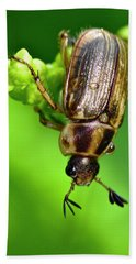 Beetle Hand Towel
