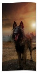 Belgian Shepherd Bath Towel by Rose-Marie Karlsen