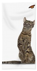 Bengal Cat With Butterfly Hand Towel