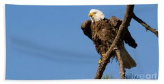 Bath Towel featuring the photograph Berry Eagle by Geraldine DeBoer