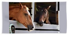 Best Friends Horse Chat Bath Towel by Sandi OReilly
