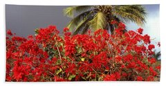 Best Hawaii Nature Photo 1990 Hand Towel