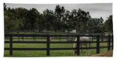 1004 - Beyond The Fence White Horse Hand Towel