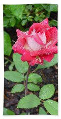 Bi-colored Rose In Rain Bath Towel