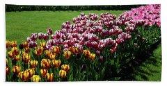 Multicolor Tulips Hand Towel