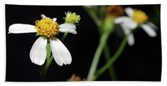 Hand Towel featuring the photograph Bidens Alba by Richard Rizzo