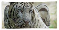 Big Cats 117 Bath Towel