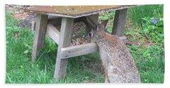 Big Eyed Rabbit Eating Birdseed Hand Towel by Betty Pieper