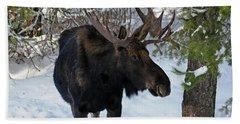 Big Moose Bath Towel