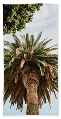 Big Palm Tree Hand Towel