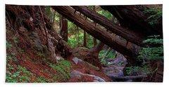 Big Sur Redwood Canyon Hand Towel
