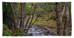 Big Sur River Near The Grange Hall Hand Towel by Derek Dean