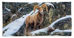 Bighorn Ram 3 Bath Towel