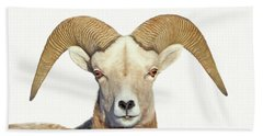 Bath Towel featuring the photograph Bighorn Sheep Ram by Jennie Marie Schell